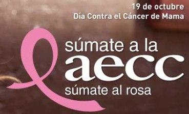 sumate-rosa-2013